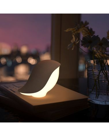 Variable Rechargeable Night Light with Induction, Bird