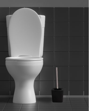 PVC Toilet brush - Uni color