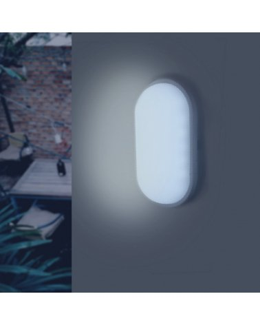 LED Wall Lamp IP65 20W White Oval