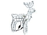 Christmas Lighted Animals